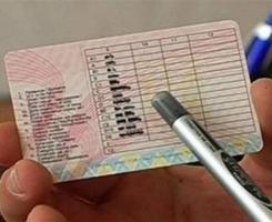 На Николаевщине водители ездят с поддельными документами