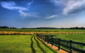 На Херсонщине фермеры незаконно пользовались 50 га земли