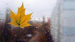 На Украину надвигаются холода и дожди со штормовым ветром