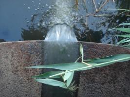 На Николаевщине после дождя в реку попали нефтепродукты