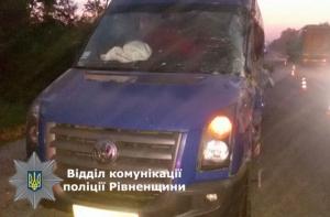 В ДТП на трассе Киев-Чоп погибли 3 человек, 4 тяжело травмированы