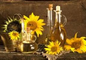 В Украине упал экспорт подсолнечного масла