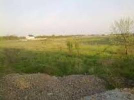 В собственность николаевской общины возвращены земельные участки на «Леваневцев» общей площадью 1 га и стоимостью 2 млн. грн.