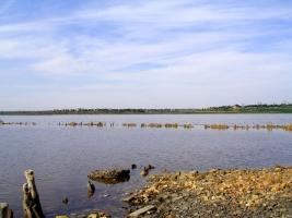 В Куяльнике может появиться Национальный природный парк