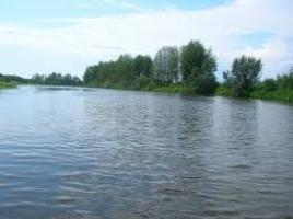 На Николаевщине чиновники требовали взятку за выдачу разрешения на использование водных ресурсов