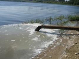 На Житомирщине из-за массового мора рыбы объявили чрезвычайную ситуацию
