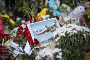 Нидерланды предоставят доклад о катастрофе МН17 уже в августе