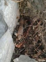 На николаевском ж/д вокзале спасатели нашли минометную мину