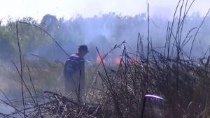 Херсон страдает из-за горящего камыша