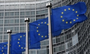 В ЕС одобрили план действий по борьбе с финансированием терроризма - СМИ