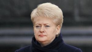 Президент Литвы призывает ЕС предоставить Украине военную поддержку
