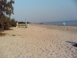 На Николаевщине предприниматель незаконно использовал более 7 га  пляжа