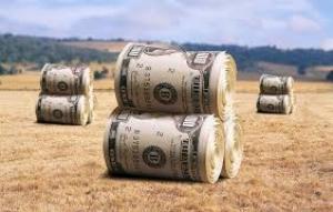 Парламент Украины продлил мораторий на продажу земли до 1 января 2018 года