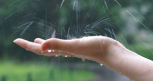 В первый день лета по Украине пройдут дожди