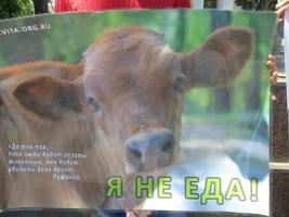 В центре Одессы прошел марш за вегетарианство