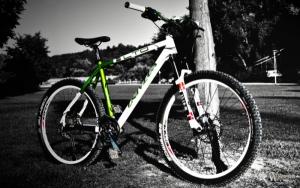 В Николаеве 12-летний школьник признался правоохранителям в краже велосипеда