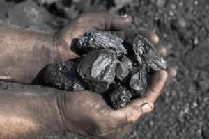 В Херсонской области  экс-нардепу от ПР щедро заплатят за уголь для коммунальных учреждений