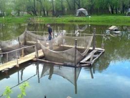 В Херсонской области рыбоводческое предприятие работало с серьезными нарушениями