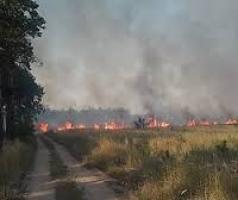 В Николаеве спасатели ликвидировали возгорание пожара сухой травы в Балабановском урочище