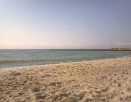Четыре одесских пляжа небезопасны для отдыха