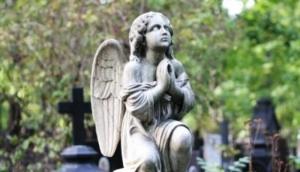 На строительство нового кладбища в Николаеве потратят 5 миллионов гривен