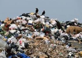 Город-свалка. Почему в Николаеве проблема мусора вышла из-под контроля