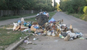 За уборку улиц от мусора и ликвидацию свалок в Корабельном районе Николаева предприниматель получит полмиллиона