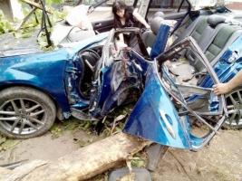 В Одессе лихой водитель врезался в дерево