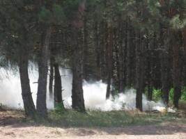 Наступление лета на Николаевщине ознаменовалось несколькими лесными пожарами