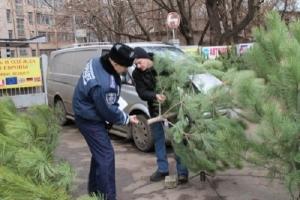 В преддверии Нового года херсонские правоохранители возьмут под охрану ёлки