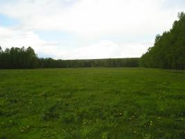 На Николаевщине участники АТО получили более 1,5 тыс. земельных участков