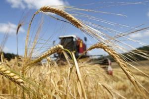В Херсонской ОГА утверждают, что область не будет помогать Крыму собирать урожай