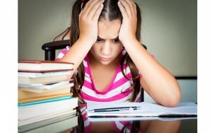 Николаевские школьники показали самый низкий уровень знаний по результатам внешнего независимого оценивания 2013 года
