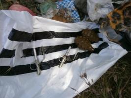 На Николаевщине женщина нашла в балке пакет с боевыми гранатами