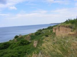 В Николаевской области суд вернул государству земельный участок в Рыбаковке площадью 4 гектара