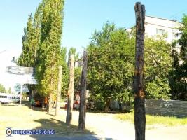 В Николаеве продолжается массовый спил деревьев