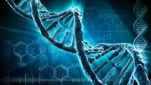Рада приняла законопроект о создании базы данных ДНК военнослужащих Украины
