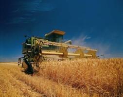 Конфликт с РФ на зерновом экспорте Херсонщины не скажется – замгубернатора