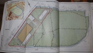 В Николаеве «Западная нефтяная группа» на месте дубовой рощи планирует построить торгово-развлекательный центр