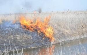 В Херсонской области - массовые пожары из-за поджогов сухой травы и камыша