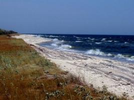 Директора Национального природного парка «Белобережье Святослава» обвинили в том, что 3 га заповедника занимает свалка