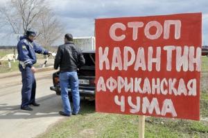 В Николаевской области ситуация с африканской чумой свиней взята под контроль