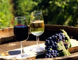 Украина намерена сохранить у себя крымские винные бренды «Массандра», «Магарач» и «Новый свет»