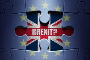 Британское правительство официально отклонило петицию о повторном референдуме по выходу из ЕС
