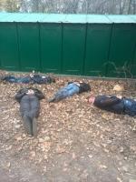 Двух одесских полицейских задержали за крышевание наркоторговли