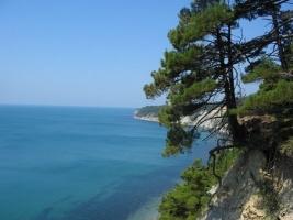 Государству вернули земельный участок на Черноморском побережье