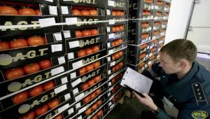 Какие продукты разрешается ввозить в Крым: СПИСОК