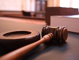 На Николаевщине суд обязал местного жителя освободить самовольно занятый участок в 12,5 га