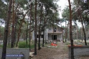 В  Николаеве пытаются отсудить сразу у семи частников незаконно выделенные земли в сосновом урочище «Октябрьское»