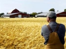 В Украине на 60% подорожало производство сельхозпродукции